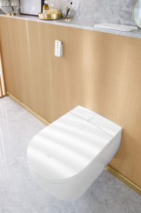 Dusch-WC 1
